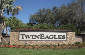 Twin Eagles Wall